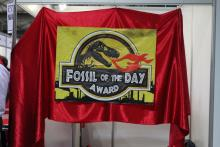 fossil of the day 30Nov2011