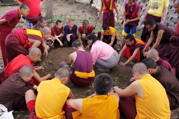 monks training 2012