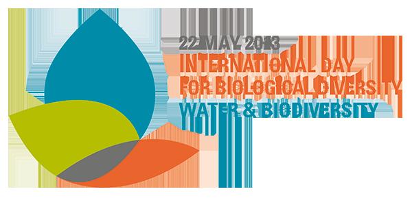 idb-2013-logo-en