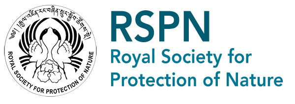 RSPN_normal_logo_title