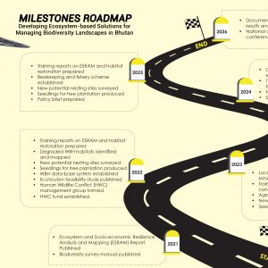 Milestones Roadmap_IKI